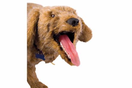 """Fantom psa do nauki wykonywania RKO/BLS u zwierząt """"Jerry"""""""