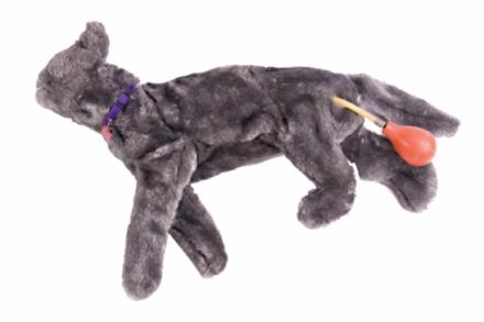 """Fantom kota do nauki wykonywania RKO/BLS u zwierząt """"Fluffy"""""""