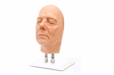 Model twarzy do nauki iniekcji, wersja B