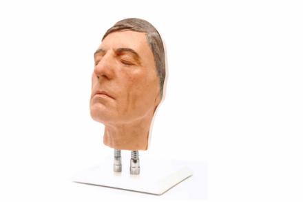 Model twarzy do nauki iniekcji, wersja D