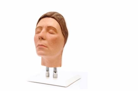 Model twarzy do nauki iniekcji, wersja E