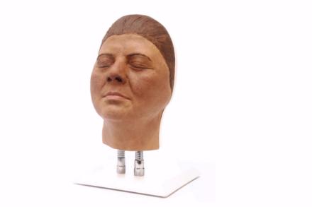 Model twarzy do nauki iniekcji, wersja F