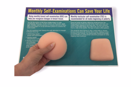 Model do samobadania piersi i jąder- unisex