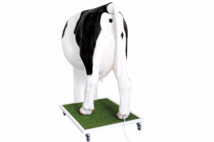 Zaawansowany model krowy